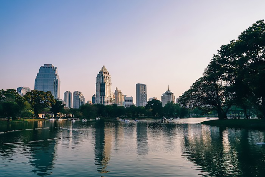 Lumphini Park is also home to a large lake where you can hire swan boats