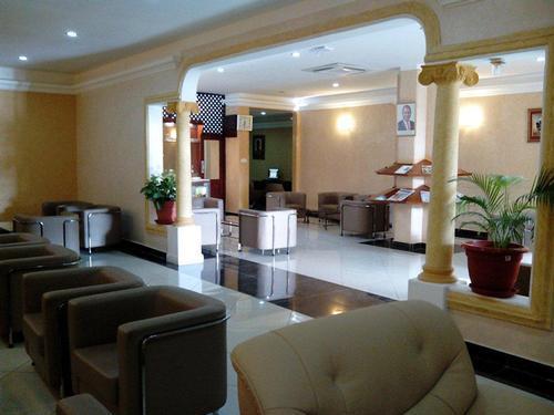 Safari Comfort Lounge