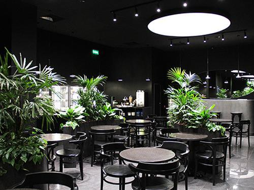 Opal Business Lounge, Ekaterinburg Koltsovo Airport