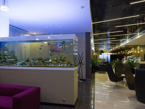 4939157e428a39 SVO8-All-Star-Lounge